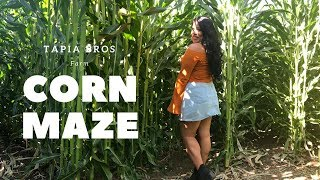 Corn Maze In Socal? Tapia Bros Farm