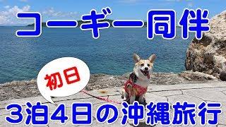 2017年6月28日~7月1日の3泊4日 ミーナスと一緒に沖縄に行ってきました ...