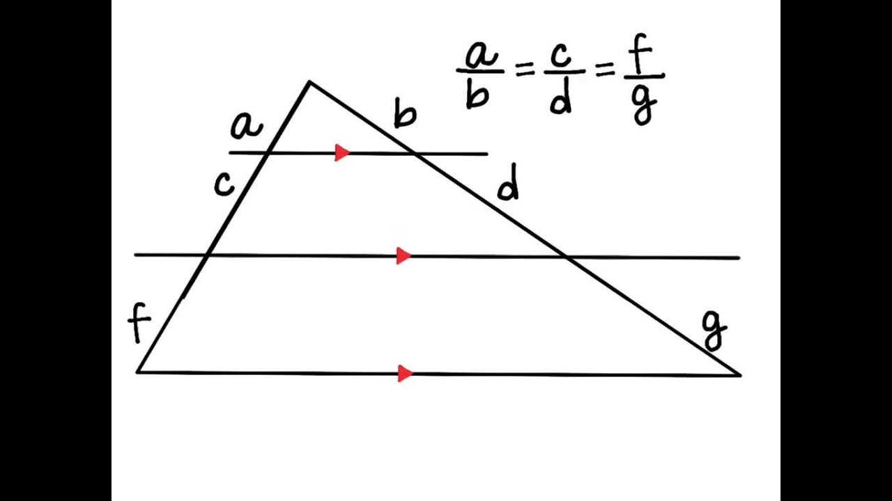 Proportions In Triangles Worksheet. math plane similar