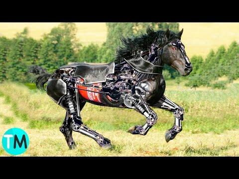 10 Animales Robots QUE NO CREERÁS QUE EXISTEN