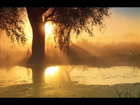 1 Hour Relaxing Music | New Age Music | Holistic Music | Restful Music | Relaxation Music 🌅323