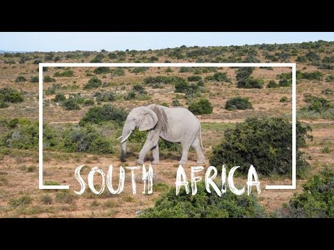 South Africa // TRAVEL DIARIES