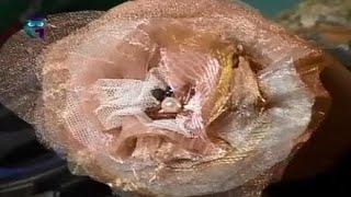 Шьем цветы из ткани. Мастер класс. Татьяна Лазарева