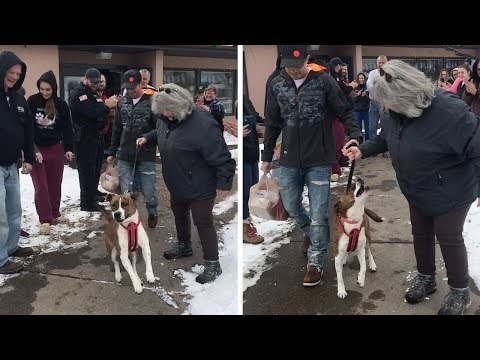 Dog Gets Parade After Being Adopted After 500 Days