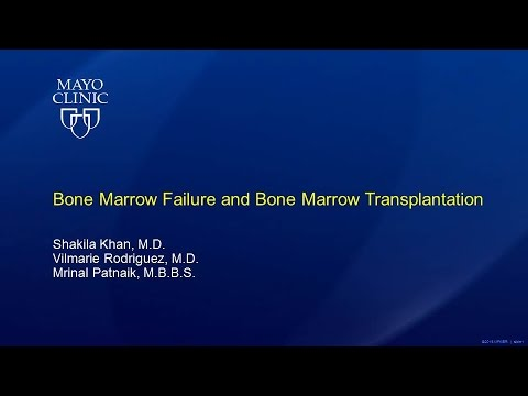 Bone Marrow Failure and Bone Marrow Transplantation