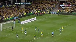 Ireland vs Sweden 1-2 2013-09-06 World Cup Qualification