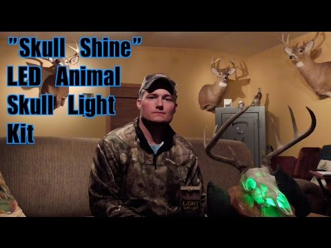 Skull Shine LED Skull Mount Lighting Kit