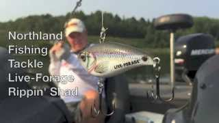 Northland Fishing Tackle Live-Forage Rippin