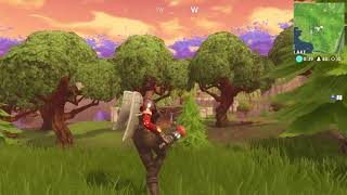 Another funny clip | Fortnite Battle Royale