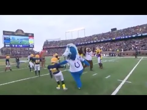 Colts Mascot Caught on Camera Beating on Little Children