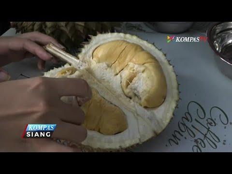 Doyan Durian? Yuk ke Sini, 50 Ribu Bisa Makan Sepuasnya!