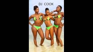DJ COOK February 2015 Dancehall Mix (Vybz Kartel PG 13 Popcaan Mavado Alkaline Gully Bop)