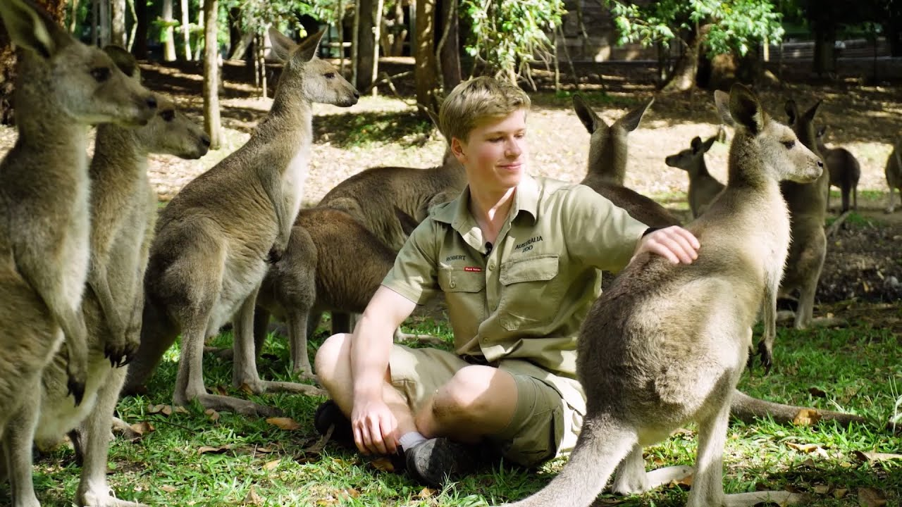 Australia Zoo has re-opened!