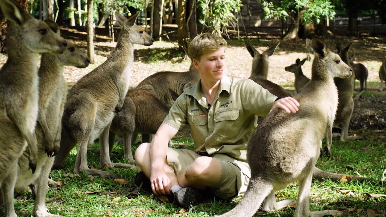 Australia Zoo has re-opened!