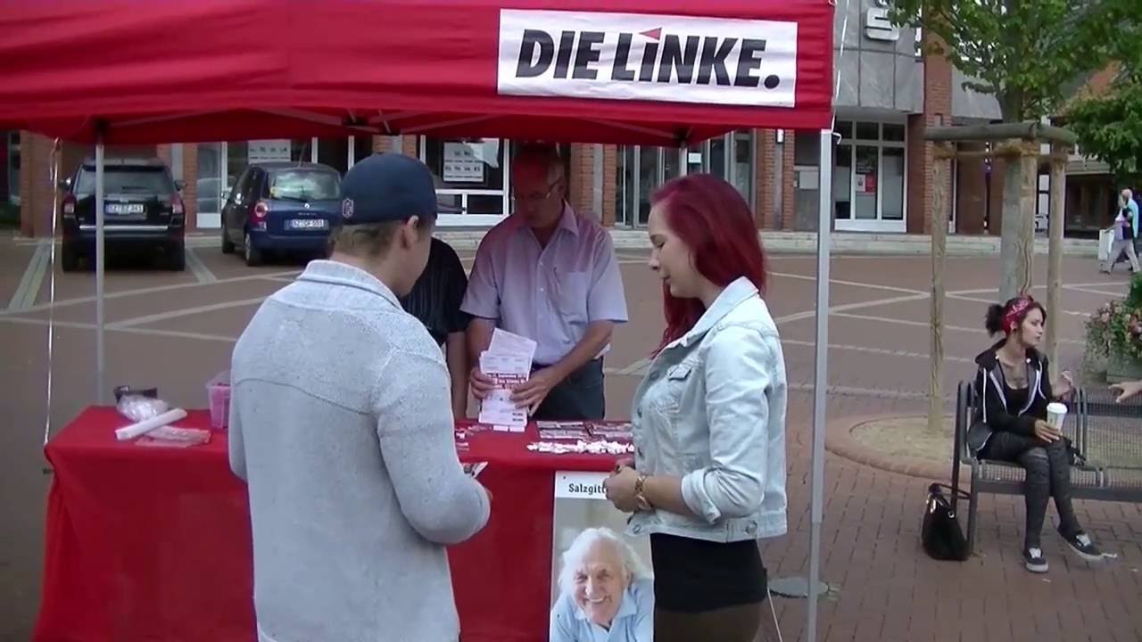 Bildergebnis für Wahlspot Die Linke