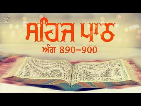 Sehaj Path Ang 890 To 900   Bhai Sarwan Singh   Fizza Records Gurbani
