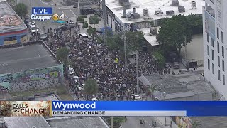 Protests Held In Wynwood, Other Parts Of South Florida