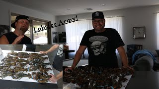 Maine Lobster Now Unboxing and Review Video - Crazy Turn of Events - 23 Live Lobsters Cooked 5 Ways