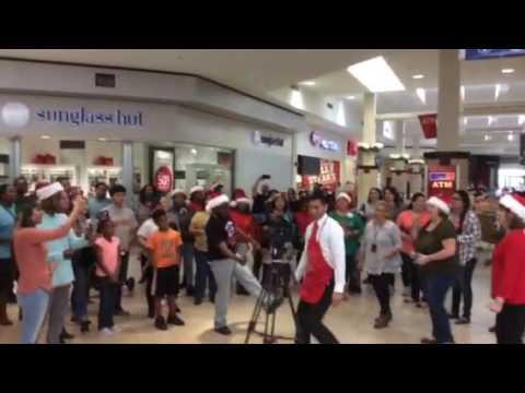 TLCF-Midland Park Mall Flashmob