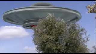 UFO IN SPAIN, OVNI EN ESPAÑA (SOBRE UNA OLIVA)