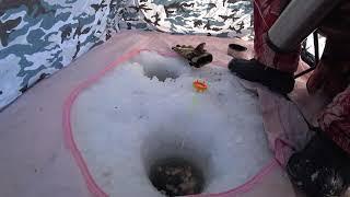 Рыбалка на реке Черемшан в палатке