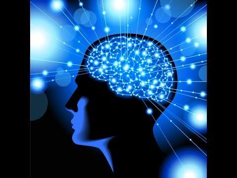 rozum,umysł komputer biologiczny ,jak działa? jak usuwać programy ? jak kasować pliki cz.1