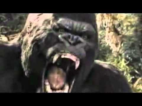 The wrath of Kong - Yo...