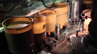 Le domaine d'Anglas - La mise en bouteille, la filtration des vins et la boutique