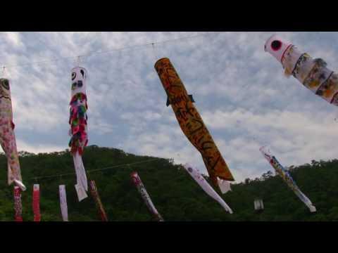 〖沖縄 羽地ダム鯉のぼり祭り〗   Okinawa Haneji Dam Koinobori Festival
