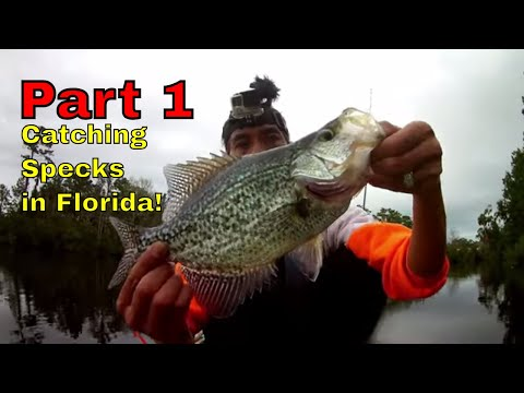 slab-crappie-slay-day-!-a-dancing-fish.-fugitive-bass-and-hookem-in-the-mouth-kayak-fishing.-florida