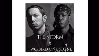Download Eminem FT KSI - THE STORM X TWO BIRD ONE STONE Mp3