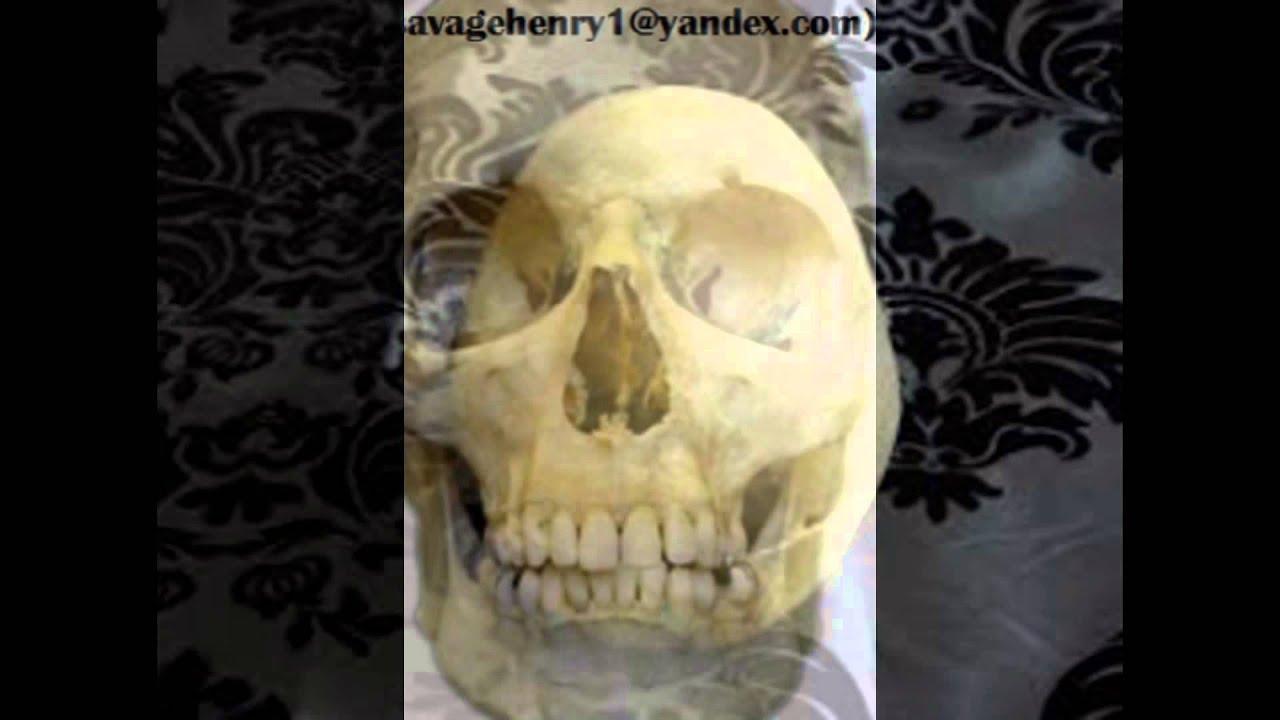 Real human skulls and human skeletons for sale