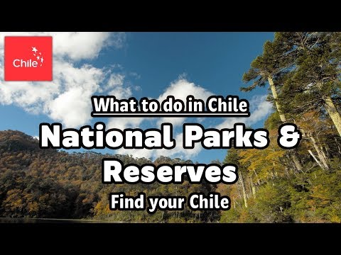 What to do in Chile: National Parks & Reserves - Find your Chile
