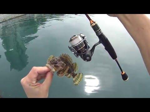 морская рыбалка в хосте