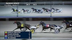 NOV 17,2019-FLAMBORO DOWNS-Race 6
