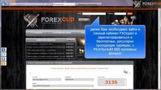 Форекс конкурсы ForexCup: бесплатная регистрация участника