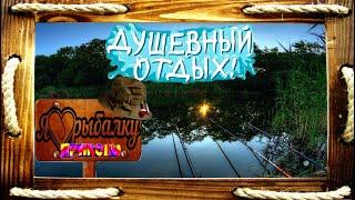 ★Рыбалка-это всё/Трофейная рыбалка/Рыбалка на щуку/Смешная рыбалка/Рыбалка с юмором/Большой улов/★
