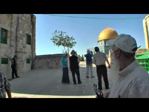 Bezalel's Jerusalem Experience - Temple Mount visit and a short Torah Lesson on the Altar
