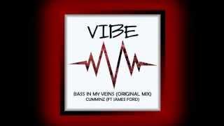 Cumminz - Bass In My Veins (feat. James Ford)