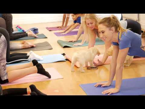 Puppy Yoga London