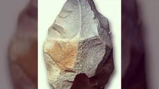Наши предки 1 часть