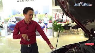 Bí quyết mua ô tô cũ tránh xe tai nạn, thủy kích