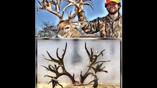 Could This TN Buck Be The World Record Free Range B&C Non-Typical? LOOK