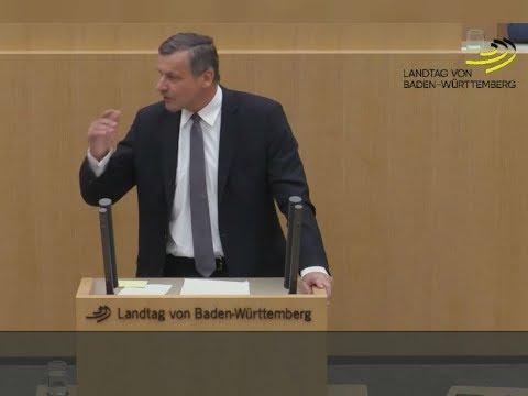 Landtag Stuttgart: FDP-Fraktionschef Ulrich Rülke nimmt AfD auseinander