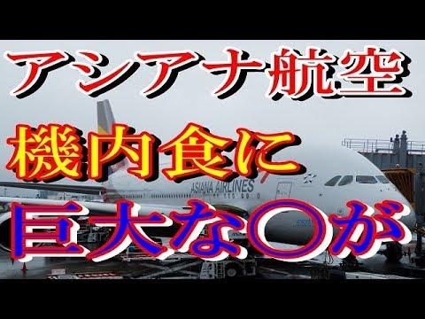 【驚愕!】アシアナ航空機内食に巨大な〇〇が混入…