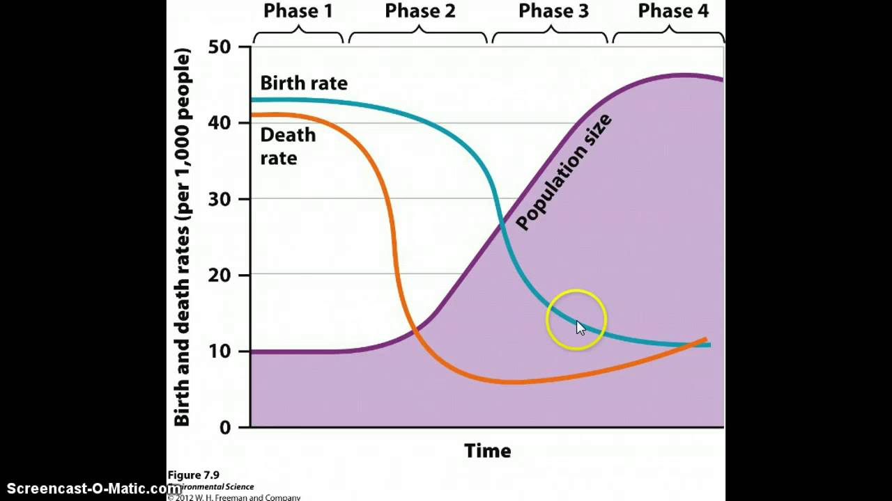 demography and demographic transition phase Demographic transition changes in demography and food storage the transition in food production cemeteries illustrates a two-phase demographic transition in.