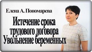 Истечение срока трудового договора. Увольнение беременных  – Елена А. Пономарева