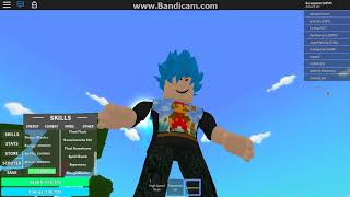 A simple video of Roblox