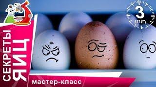 Супер эксперименты с яйцами! Научные фокусы в домашних условиях. StarMediaKids(Что вы знаете о яйцах? Мы провели с ними эксперимент и готовы показать вам эксперименты для детей с яйцами..., 2015-10-27T14:39:27.000Z)