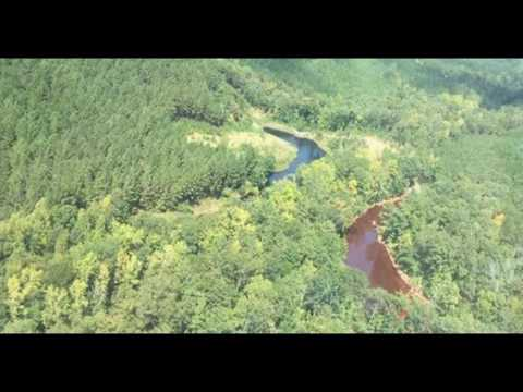 Alabama, Georgia Declare 'State of Emergency' After Massive Pipeline Spill
